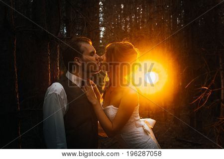 dramatic picture bride and groom on the background of leaves and forest backlight.