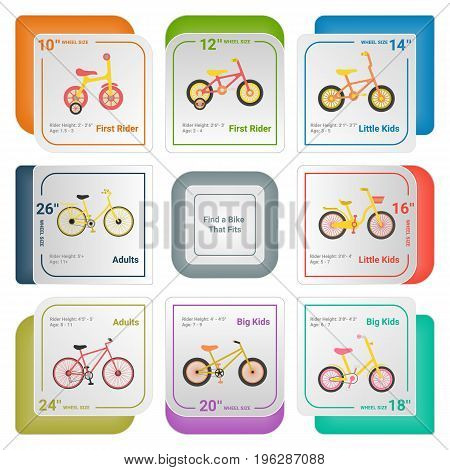 Bicycle Infographics Isolated On A White Background. Vector.