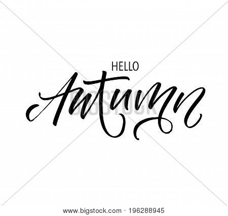 Hello Autumn phrase. Ink illustration. Modern brush calligraphy. Isolated on white background.