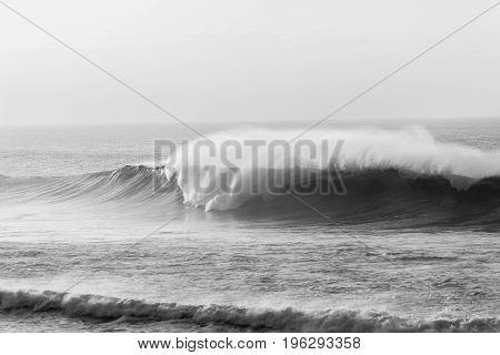Wave Ocean Power Black White
