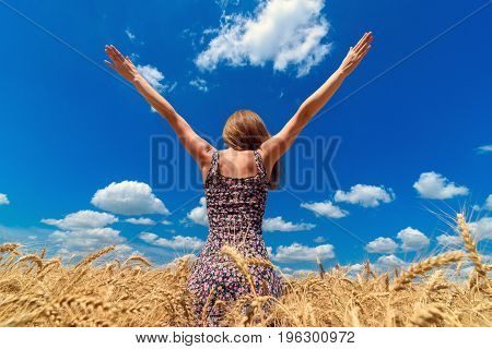 Back View Of Young Woman Walking In Golden Wheat Field With Cloudy Blue Sky Background, Free Space.