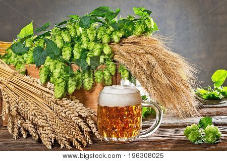still life with hop cones and raw material for beer production