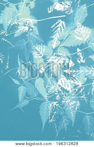 Artistic floral background in blue and white