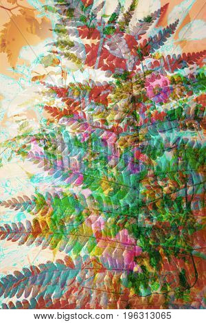 Artistic floral background with colorful fern leaf