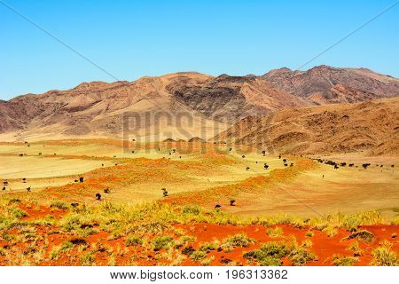 Stunning landscape of the Naukluft mountains in Namibia