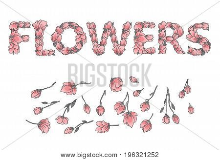 LOVE sign or lettering made with sakura flowers and leaves - floral alphabet letters set, vector design