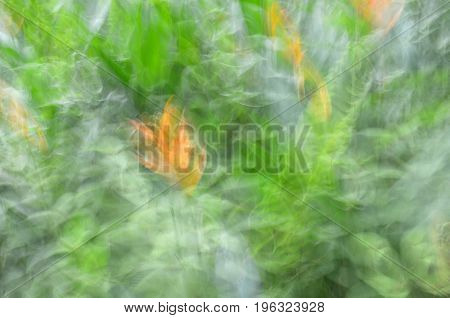 Abstract motion blur flower  leave yellow green background