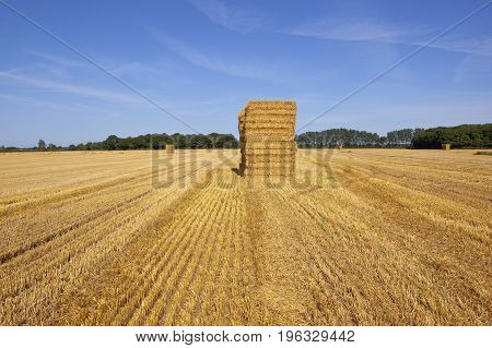 Golden Straw Bales