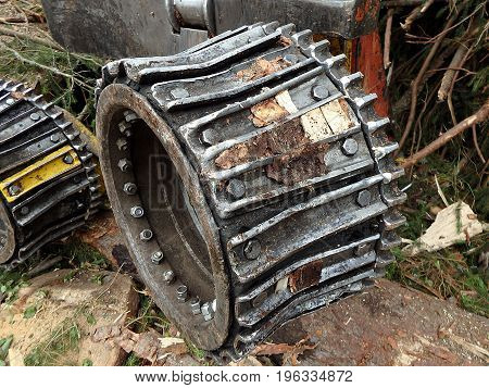 Timber harvester operating head , Forest cutting
