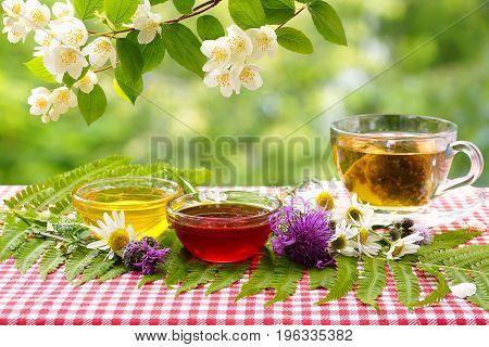 Flower honey cup of tea under a branch of jasmine. Tea in the summer garden.