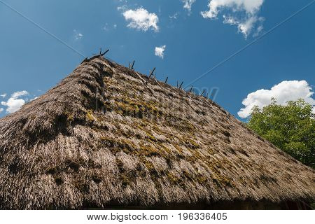 The roof is covered with straw against the blue sky on a clear sunny day. Outdoors