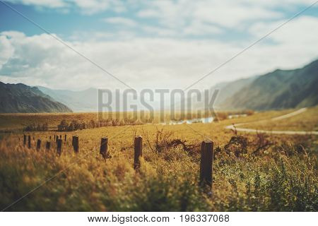 True tilt shift view of abandoned low wooden poles from fencing in foreground the mouth of the Katun River multiple mountains hills meadow with native grasses and bend of dirt road Altai Russia