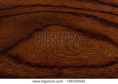 The texture of the wood from old tree. Hi res photo.