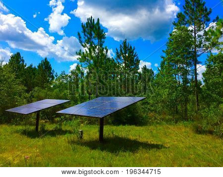 Solar panels sitting alone in woods on a sunny day