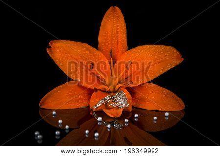 jewelry wedding rings with diamonds inside flower, gemstone