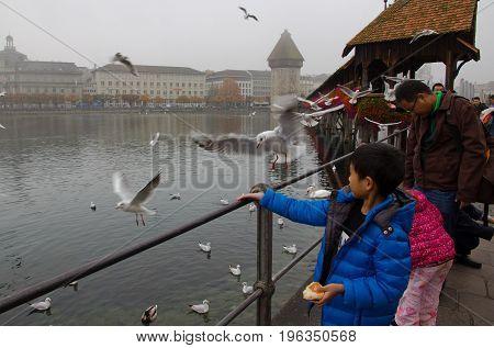 Lucerne Switzerland - October 24 2016 : Tourists feeding seagull at Chapel Bridge Lucerne