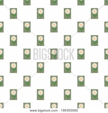 Flower pattern seamless repeat in cartoon style vector illustration