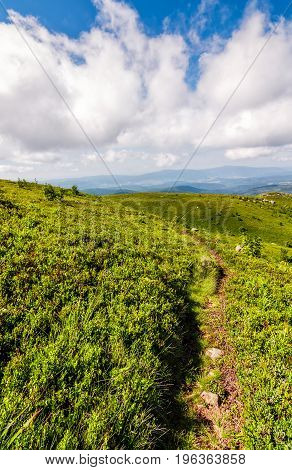 Path Through The Mountain Ridge In Summer