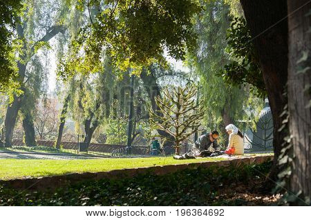 June 24, 2012, Santiago, Chile. Couple enjoying sunny spot relaxing on ground cover in park on small hill in the center of Santiago amongst trees