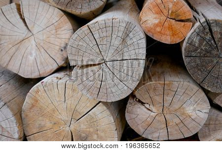 Close up firewood stack for the background. texture of the timber
