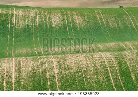 South Moravian Fields, Czech Republic Fields, Moravia Hills