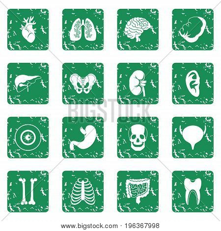 Human organs icons set in grunge style green isolated vector illustration