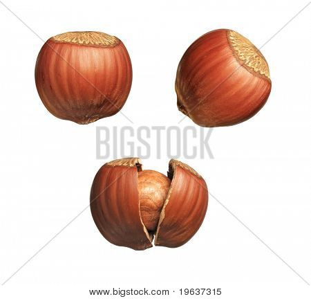 Full-size composite photo: closeup of whole and cracked hazelnuts. Isolated on white background.