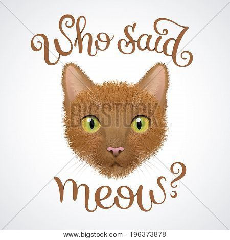 Muzzle of red cat with question: Who said meow? Character and lettering illustration.