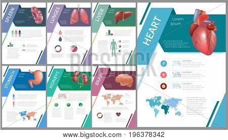 Internal human organs infographics set. Set of Medicine poster. Medical brochure template. Vector illustration