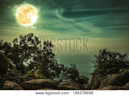 Landscape Of Rock Against Blue Sky And Full Moon Above Wilderness Area In Forest. Cross Process.