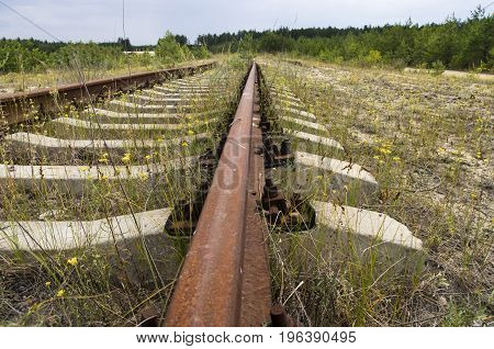 Old railroad tracks in the forest, landscape