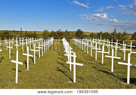 Rows of white crosses represent soldiers who gave their life in a country cemetery