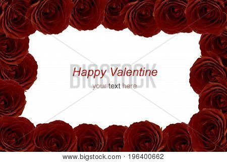 Maroon red roses bouquet as frame on white background.