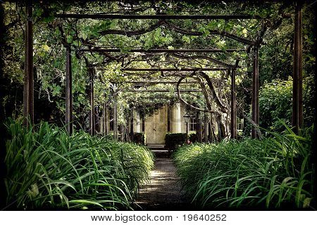 Antique Pergola Arbor