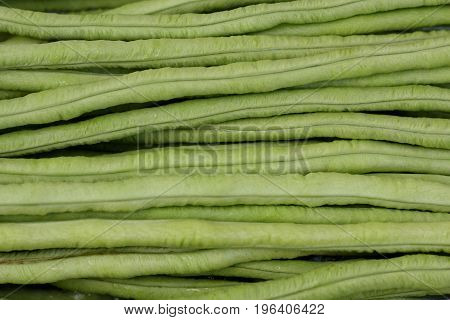 Fresh and green cowpea for use as background.