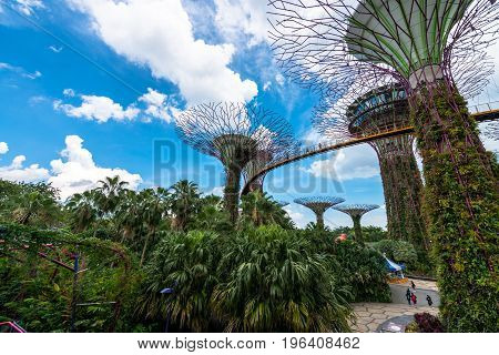 SINGAPORE - MARCH 22 2017: SINGAPORE - MARCH 22 2017: Horizontal view of Supertree Grove at Gardens by the Bay Park in Singapore. Futuristic art.