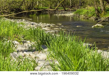 waterside scenery at Kupfer river in Hohenlohe a area in Southern Germany at early spring time