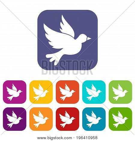 Dove icons set vector illustration in flat style in colors red, blue, green, and other