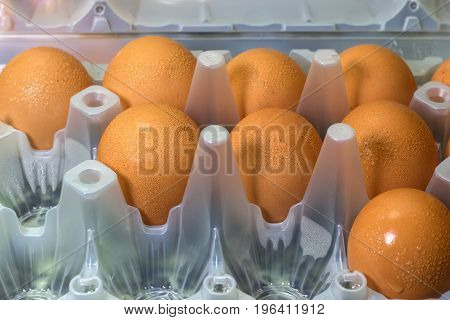 Close-up In Raw Egg In A Plastic Tray
