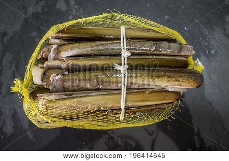 Bundle of razor clams in opened plastic net isolated over black slate