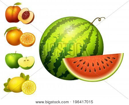 Ripe striped watermelon fruits slice realistic juicy apple healthy vector illustration. Slice green isolated ripe melon. Vegetarian diet freshness lemon dessert. Water refreshment delicious fruit.
