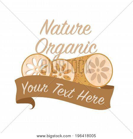 Colorful Watercolor Texture Vector Nature Organic Vegetable Banner Lotus Root