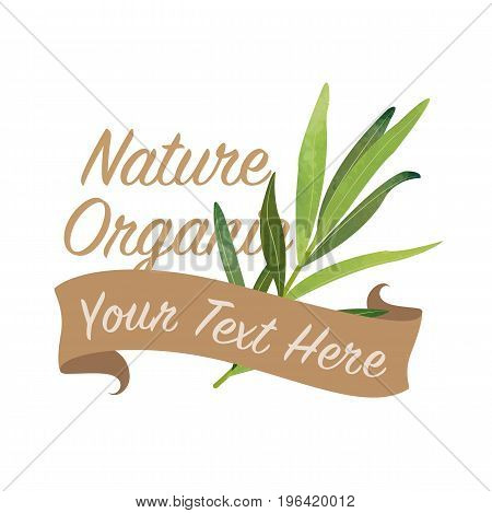 Colorful Watercolor Texture Vector Nature Organic Vegetable Banner Tarragon
