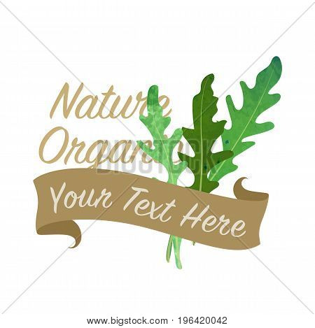Colorful Watercolor Texture Vector Nature Organic Vegetable Banner Arugula Ruccola Leaf