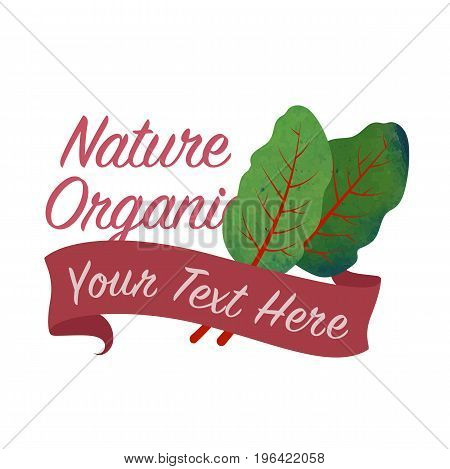 Colorful Watercolor Texture Vector Nature Organic Vegetable Banner Mangold Swiss Chard Leaf