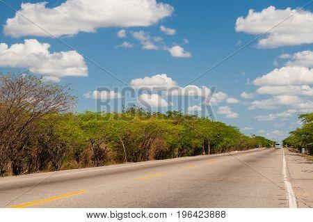 Solitary straight road at La Guajira Colombia