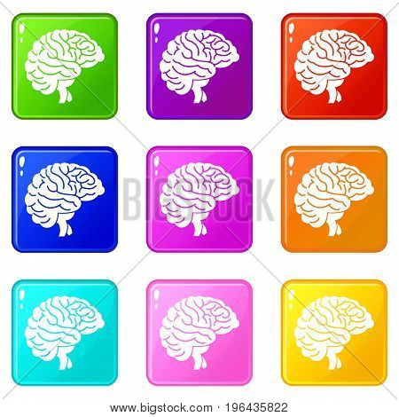 Brain icons of 9 color set isolated vector illustration