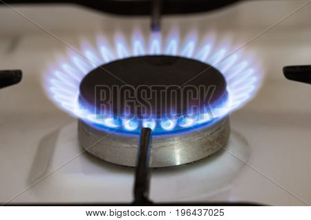 Blue flame coming out of vintage natural gas stove burner.