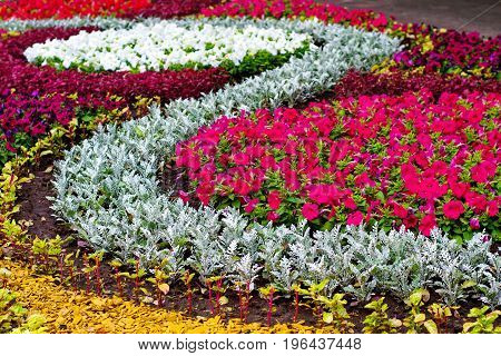 Scenic View Of Colorful Flowerbed And Lawns In A City Part With Vivid Colors