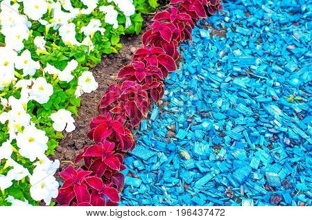 Colorful Flowerbed And Lawns In A City Part With Vivid Colors